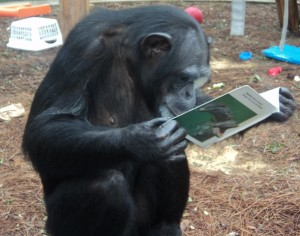 APE reading pic for blog